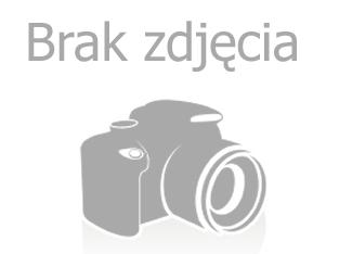 Grafik/Pracownik studia reklam